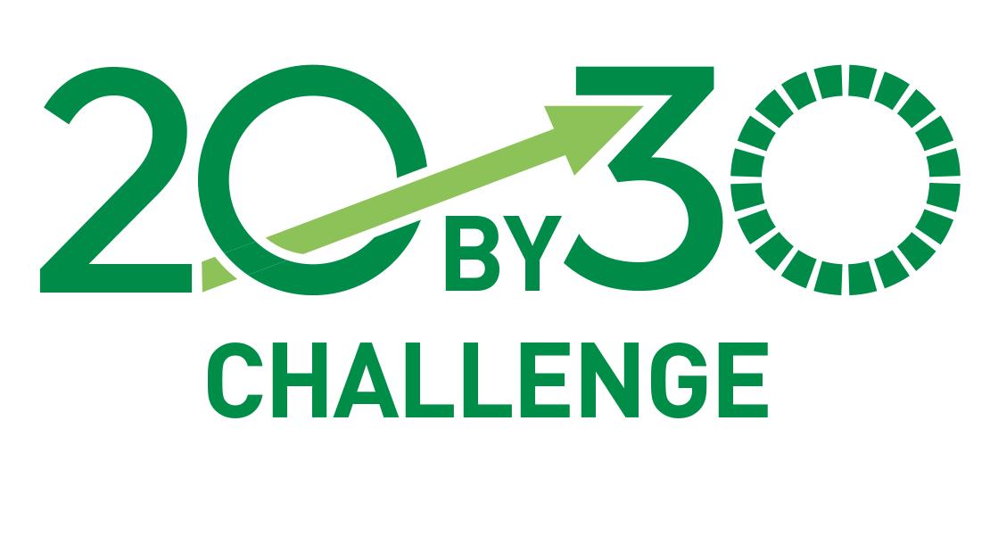 20x30 Challenge