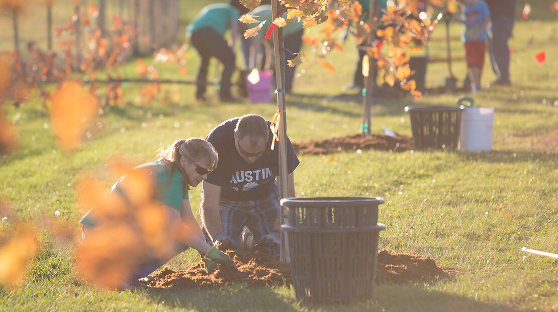 Hormel Foods employees planting trees
