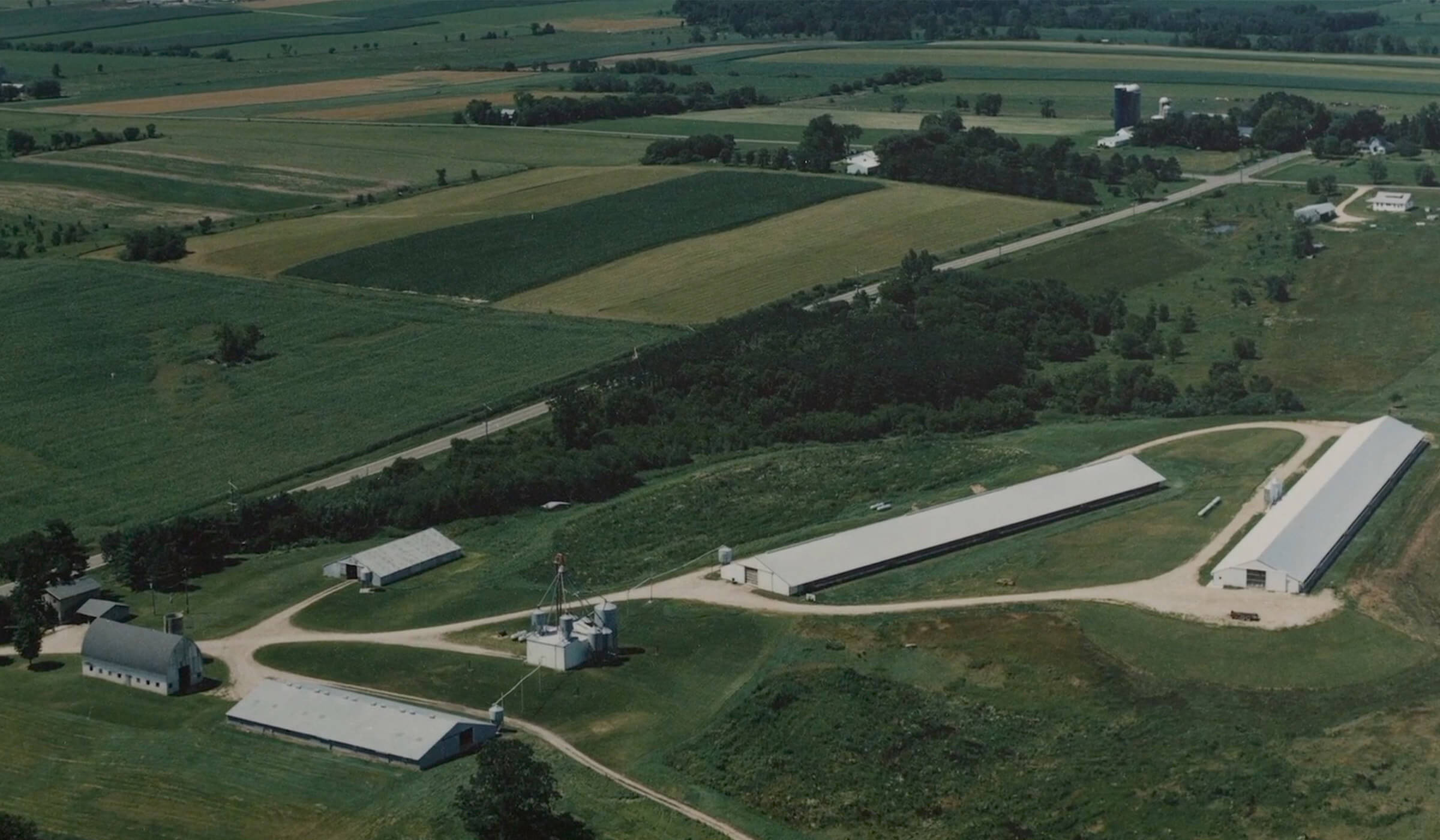Pine Hill Farms