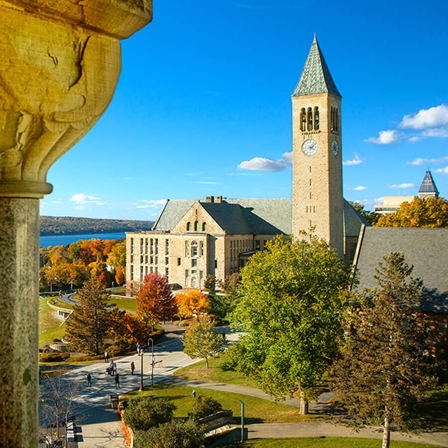 a beautiful college campus