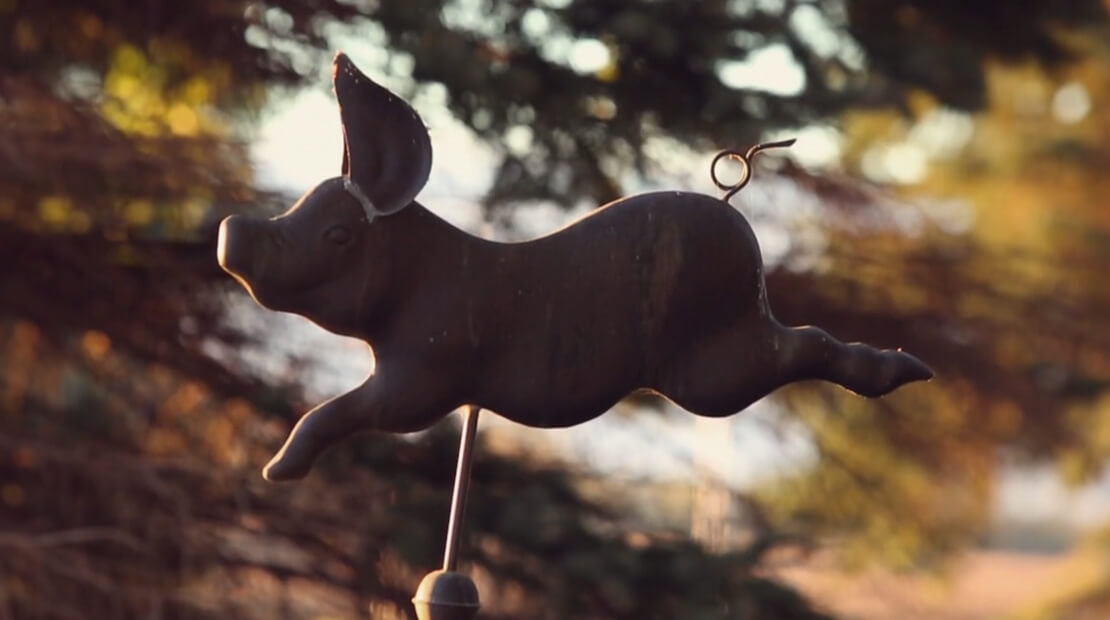Farm: Pig Weathervane
