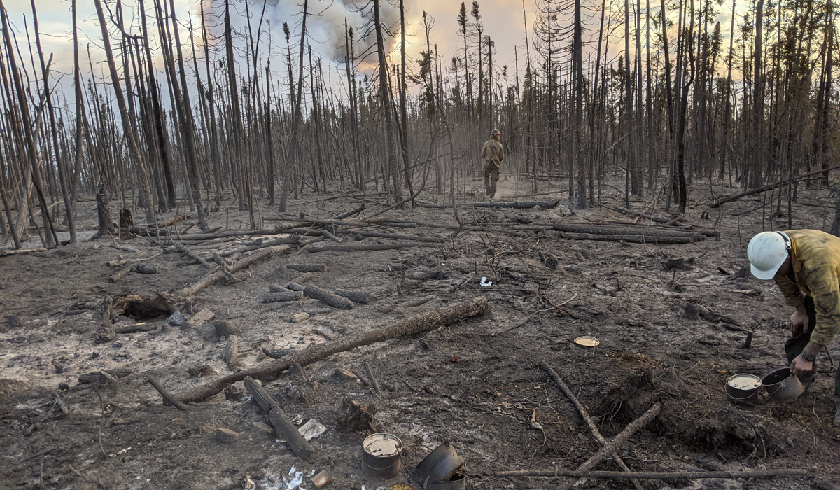 Smokejumpers in a recently burnt landscape